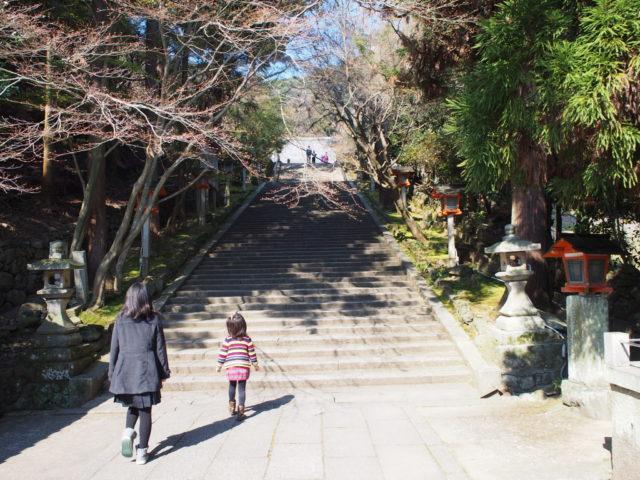 この石段を上がると法輪寺の本殿に
